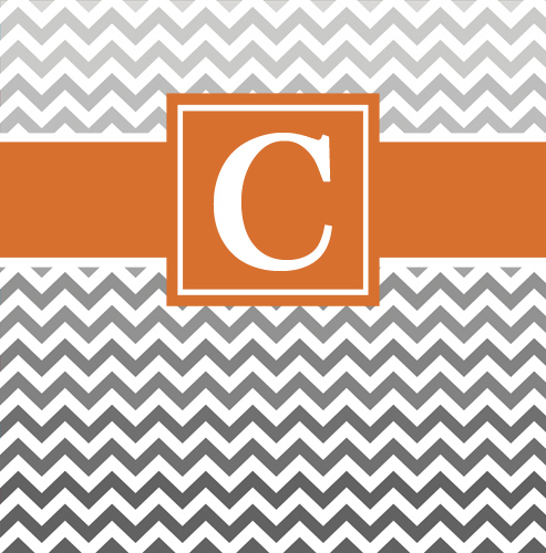 Shower Curtains-Ombre chevron